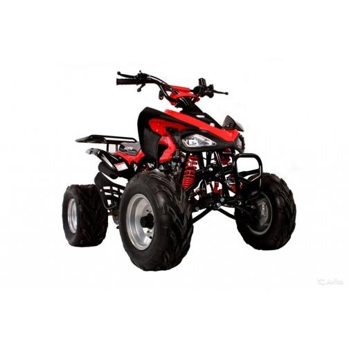 Квадроцикл RANJIR ELFORCE 1000W-1026048