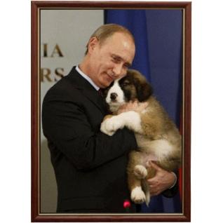 Портрет Владимира Путина - 01 в рамке и со стеклом 30х40-6102903