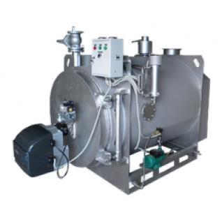Газовый паровой котел производительностью до 500кг/час низкого давления