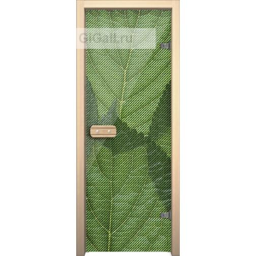 Дверь для бани или сауны стеклянная Арт-серия с рисунком Глассджет Листья зеленые,липа-5900577