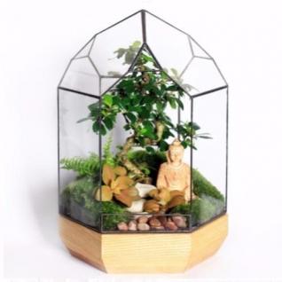 Сад в стекле Умиротворение-6721927