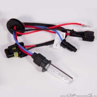 Лампа ксеноновая APP PREMIUM H1 - 4300K Ксенон APP-37126481