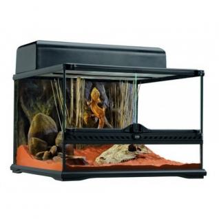 Hagen Террариум из силикатного стекла, 45 x 45 x 30 см-1292488