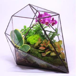 """Сад в стекле """"Признания в любви""""-6721516"""