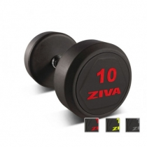 ZIVA Гантельный ряд ZIVA SL ZVO-DBSL-2101