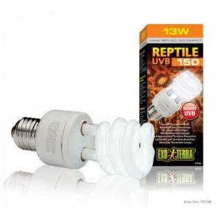 Hagen Лампа для пустынного террариума Repti Glo 10.0 Compact, Т10/13 Вт-1294253