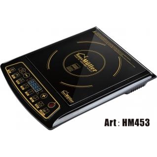 Индукционная плита Haus Muller-453-37658343