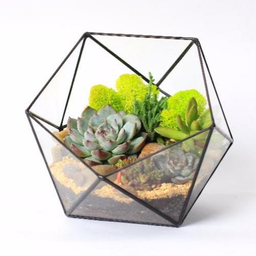"""Сад в стекле """"Красочный день""""-6721520"""