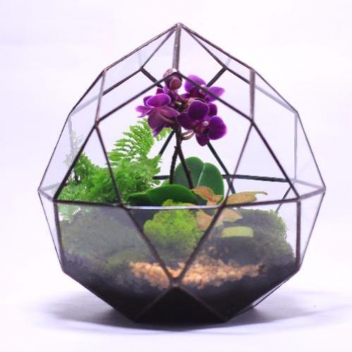 """Сад в стекле (флорариум) """"Нежность""""-6721524"""