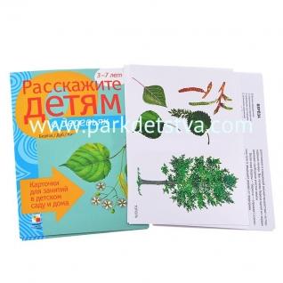 Расскажите детям о деревьях Карточки для занятий в детском саду и дома Мозаика-синтез