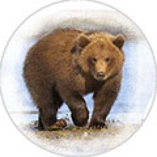 """Пластина шунгитовая для телефона круглая """"Медведь"""" диаметр 20 мм"""