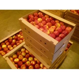 яблоко-6011749