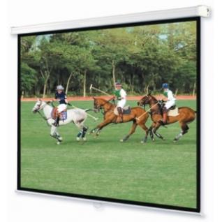 Настенный проекционный экран Standart 2440 х 2440 мм-7008600