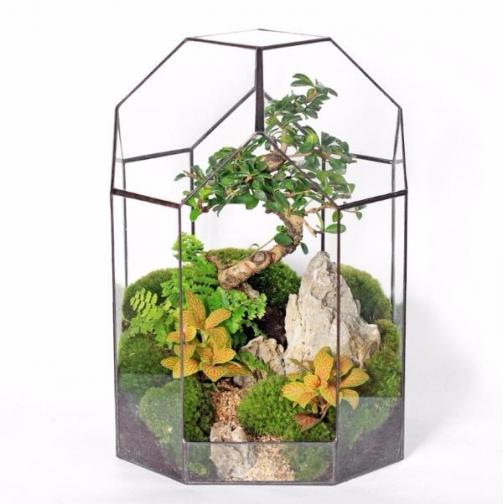 """Сад в стекле """"Таинственные тропики""""-6721515"""
