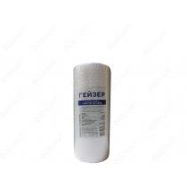 Картридж Гейзер ПФМ 20/10 – 10 BB (для холодной воды) Гейзер