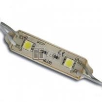 GSlight Модуль PGM5050-2 12V IP65 White
